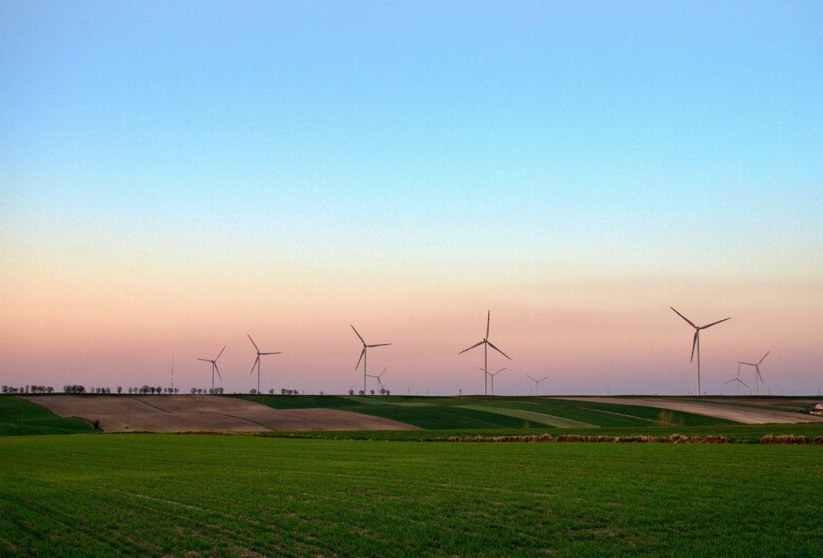 Trotz Corona: Thema Nummer 1 bei Schweizer Firmen ist «Nachhaltigkeit»